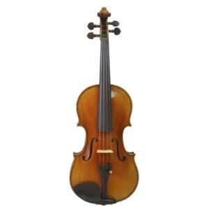 violin-fantasia-44
