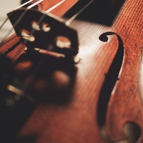 Поддельная скрипка «Goronok»