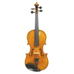 violin-fantasia-78